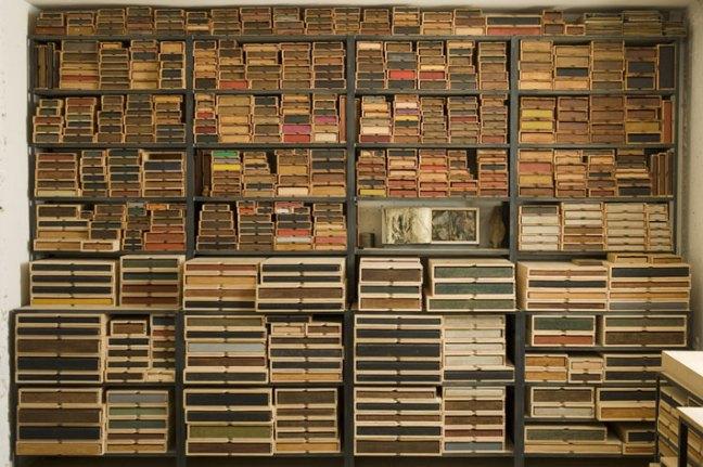 La biblioteca del bosque
