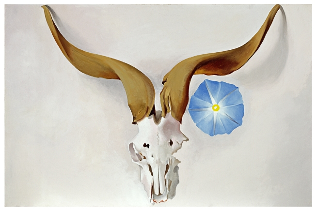 Georgia O'Keeffe, Ram's Head, Blue Morning Glory, 1938. Oil on canvas; 20 x 30 in. Georgia O'Keeffe Museum; Gift of The Burnett Foundation. © Georgia O'Keeffe Museum