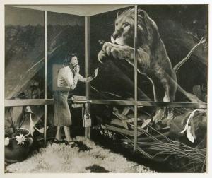Grete Stern_animales