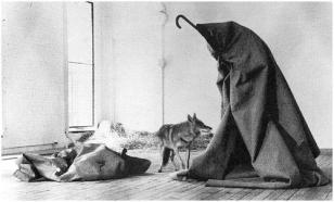Beuys_coyote