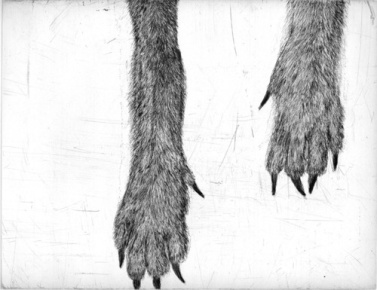 KikiSmith_patas-lobos