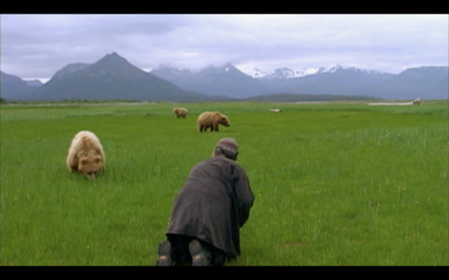 grizzly man bears
