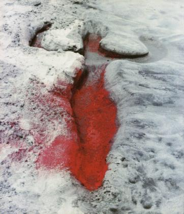ana-mendieta-earth-work-2