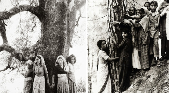 Movimiento-Chipko_India