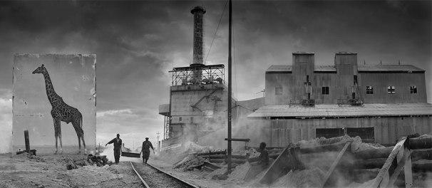 Nick-Brandt_Inherit the dust6