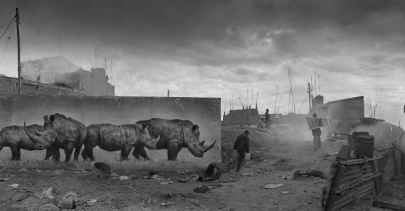 Nick-Brandt_Inherit the dust8