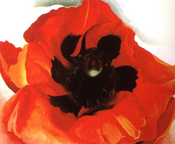 okeeffe_red-poppie