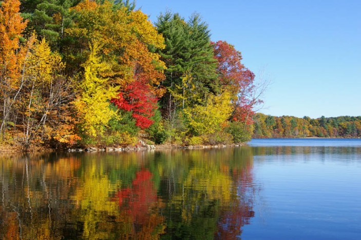 La laguna de Walden